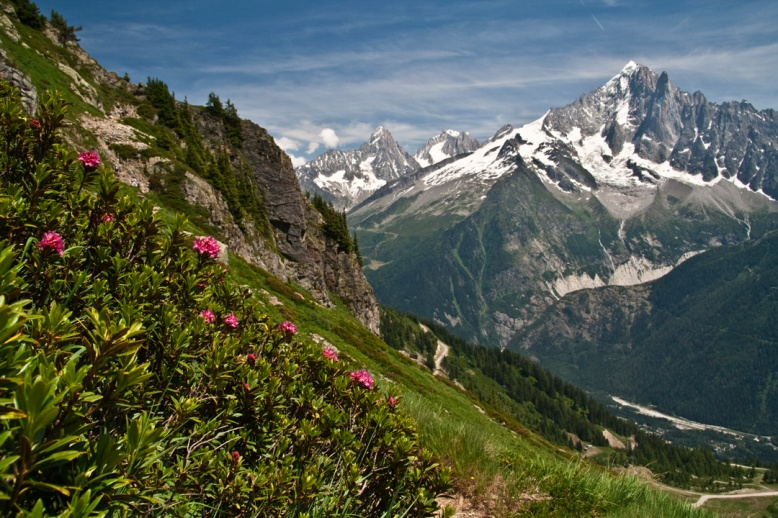 chamonix valley.jpg